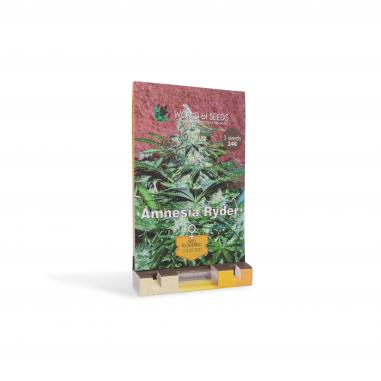 Autoflower cannabis seeds Amnesia Ryder