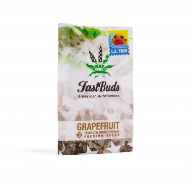 Autoflower cannabis seeds Grapefruit
