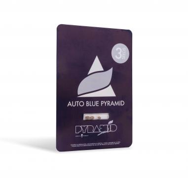 Autoflower seeds Auto Blue pyramid pyramid seeds