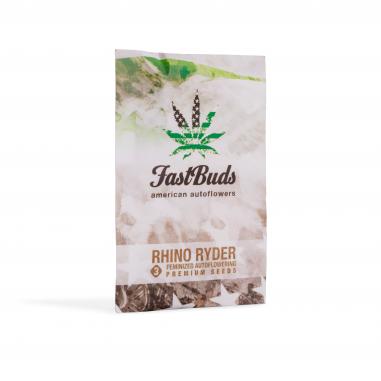 Auto-flowering cannabis seeds Rhino Ryder