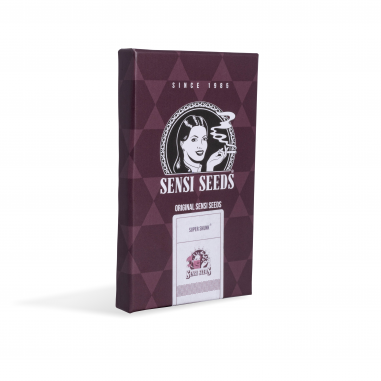 Cannabis seeds Super Skunk