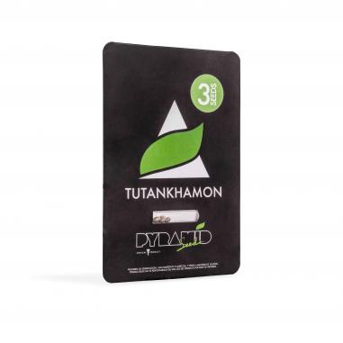 Feminized marijuana seeds Tutankhamon pyramid seeds