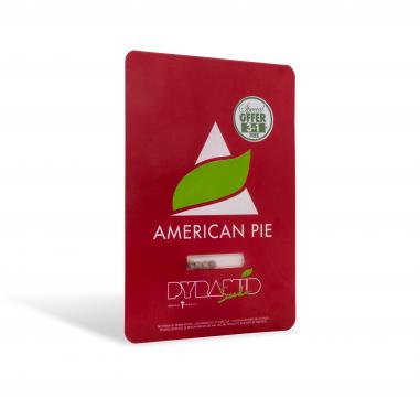 American Pie feminized cannabis seeds pyramid seeds