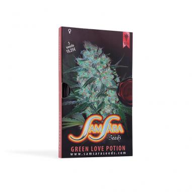 Cannabis seeds Green Love Potion
