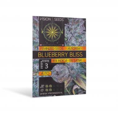 Autoflower cannabis seeds Blueberry Bliss Auto