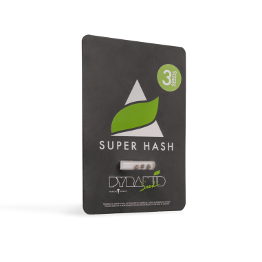 Marijuana seeds Super Hash pyramid seeds