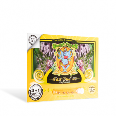 Auto-flower cannabis seeds Fast Bud 2 Auto