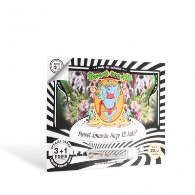 Marijuana seeds Sweet Amnesia Haze XL Auto