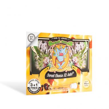 Cannabis seeds Sweet Cheese XL Auto