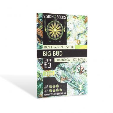 Feminized cannabis seeds Big Bud